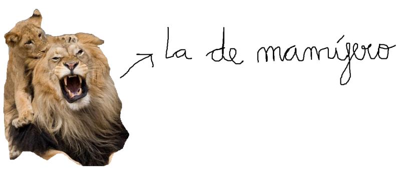 mamifero