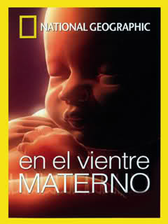 En-el-vientre-materno-video